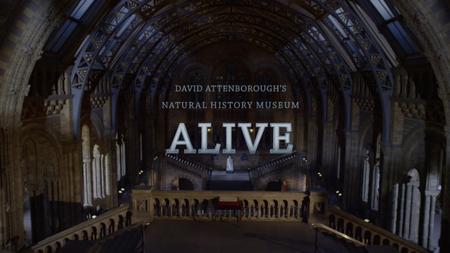 David Attenborough's Natural History Museum Alive (2013) [Repost]