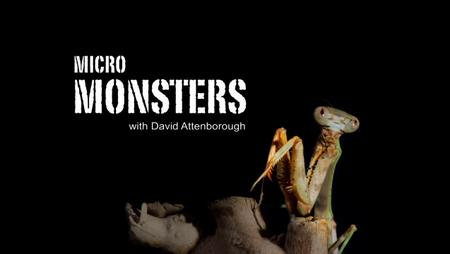 Micro Monsters with David Attenborough (2013)