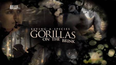 Animal Planet - Saving a Species: Gorillas on the Brink (2007)