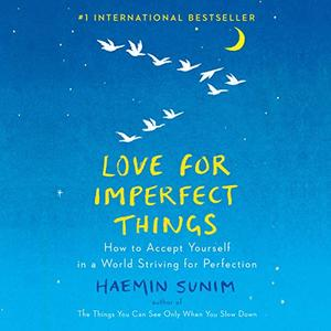 Love for Imperfect Things: How to Accept Yourself in a World Striving for Perfection [Audiobook]