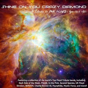 VA - Shine On You Crazy Diamond: A Tribute To Pink Floyd's Greatest Hits (2018) [Official Digital Download]