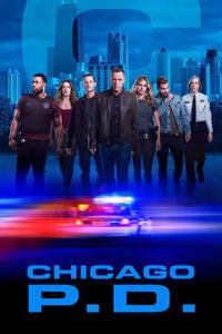 Chicago P.D. S06E14