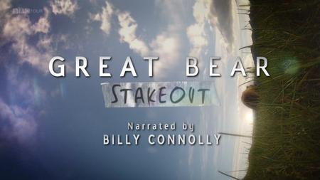 BBC - Great Bear Stakeout (2013)