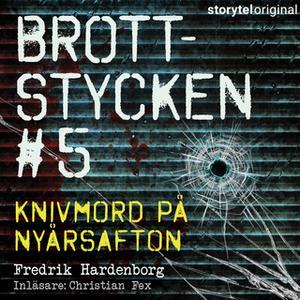 «Brottstycken - Knivmord på nyårsnatten» by Fredrik Hardenborg