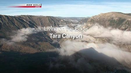 NHK Wildlife - Living on the Edge: Tara Canyon (2011)