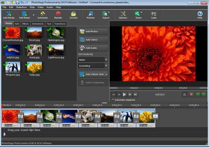 NCH PhotoStage Slideshow Producer Professional 6.08