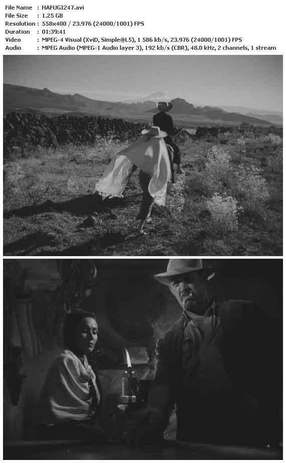 The Fugitive (1947)