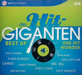 VA - Die Hit-Giganten: Best Of One Hit Wonder (2013) {3CD Box Set} Re-Up