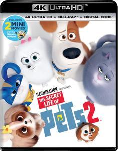 The Secret Life of Pets 2 (2019) [4K, Ultra HD]