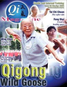 Qi Magazine 66