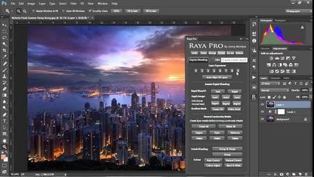 Raya Pro 3.0 (Win/macOS)