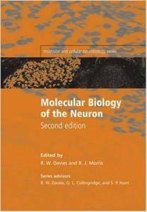Molecular Biology of the Neuron (Repost)