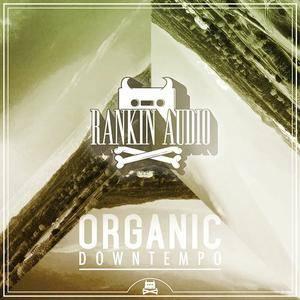 Rankin Audio - Organic Downtempo WAV