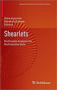 Shearlets: Multiscale Analysis for Multivariate Data