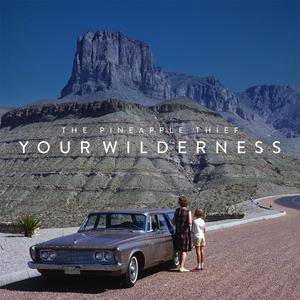 The Pineapple Thief - Your Wilderness (2016) [Deluxe Edition, 2CD]
