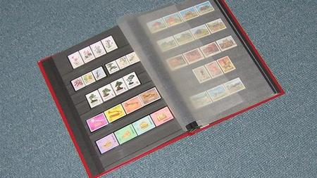 An Introduction to the World of Stamp Collecting