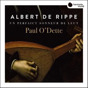Paul O'Dette - Rippe: Works for lute 'Un perfaict sonneur de Leut' (2019) [Official Digital Download 24/88]