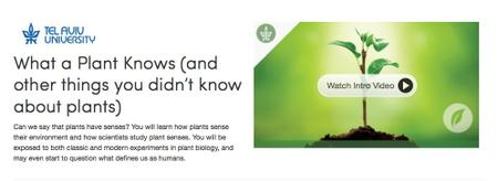 Coursera - What a Plant Knows (Tel Aviv University)