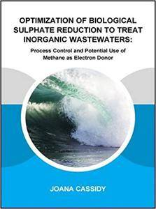 Optimization of Biological Sulphate Reduction to Treat Inorganic Wastewaters: Process Control and Potential Use of Methane