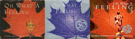 VA - Oh What A Feeling: A Vital Collection Of Canadian Music (Vol. 1-3) (1996-2006)