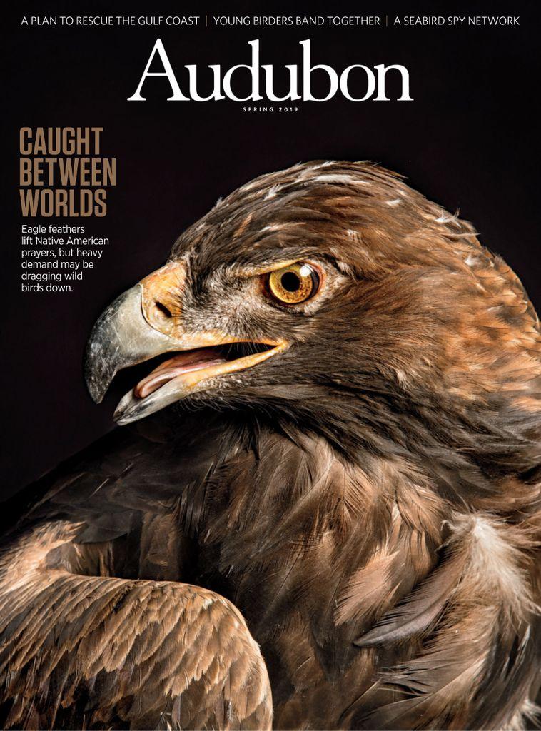 Audubon Magazine - March 2019