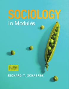Sociology in Modules, 2 edition (repost)