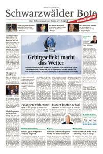 Schwarzwälder Bote Hechingen - 11. Januar 2019