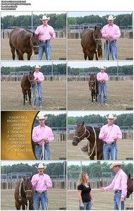 Clinton Anderson - Horsemanship 101