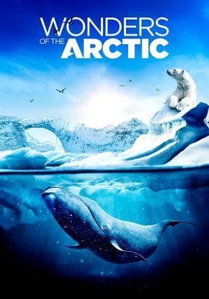 Wonders of the Arctic (2014)