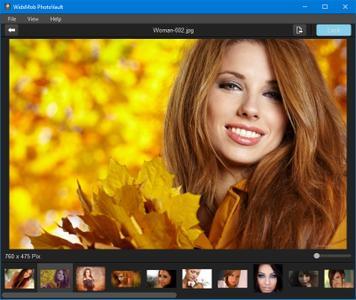 WidsMob PhotoVault 2.5.8 Multilingual Portable