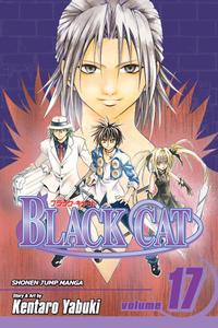 Black Cat v17 (2008) (Digital) (aKraa