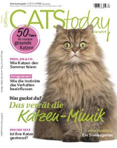 Cats Today – Mai 2019