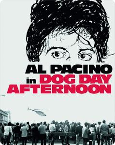 Dog Day Afternoon (1975) [w/Commentary]