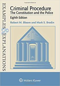 Examples & Explanations: Criminal Procedure: The Constitution and the Police Ed 8
