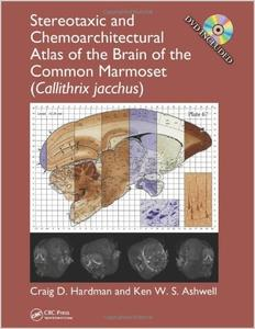 Stereotaxic and Chemoarchitectural Atlas of the Brain of the Common Marmoset
