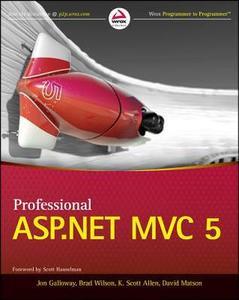 Professional ASP.NET MVC 5 (repost)
