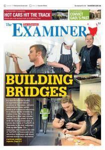 The Examiner - April 7, 2018