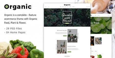 ThemeForest - Organic v1.0 - Responsive Organic Food Store PSD Template - 19826204