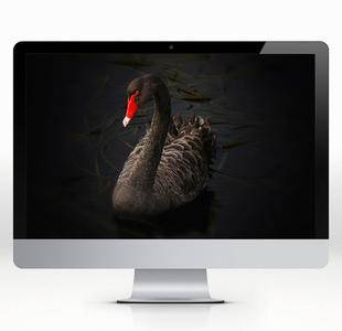 5120x2880 5K iMac Wallpapers 6