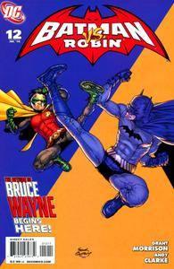 Batman and Robin 012 2010