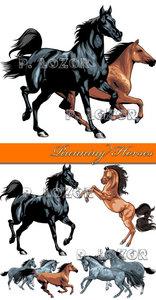 Running Horses - Stock Vectors