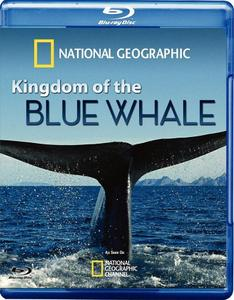 National Geographic - Kingdom of the Blue Whale (2009)