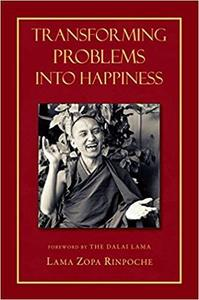 Transforming Problems into Happiness [Repost]