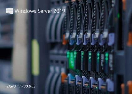 Windows Server 2019 Build 17763.652