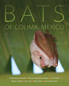 Bats of Colima, Mexico
