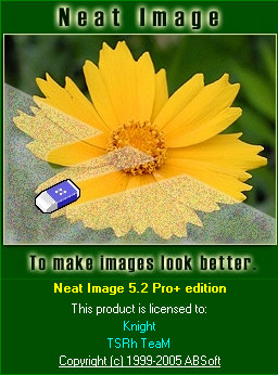 Neat Image 5.2 Pro+ edition
