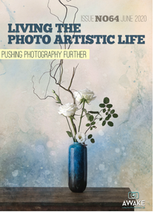 Living The Photo Artistic Life - June 2020