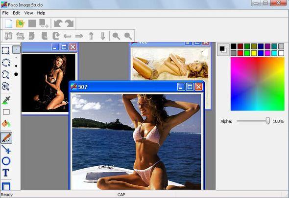Falco Image Studio 3.2 Portable
