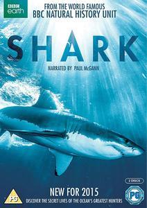 Shark (1-2 part)