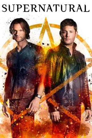 Supernatural S14E08